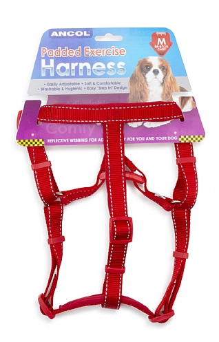 Medium Padded Dog Harness