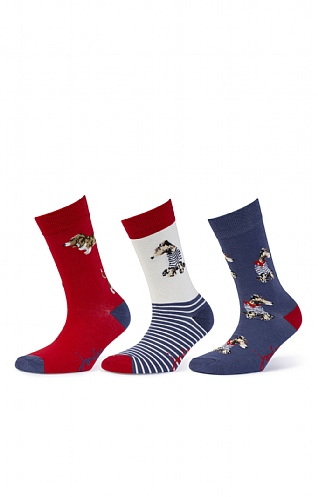Joules 3 Pack Brilliant Bamboo Socks
