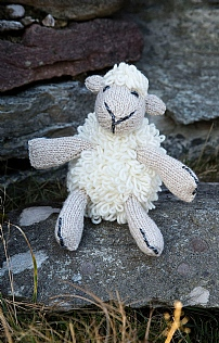 Carraigdonn Sheep